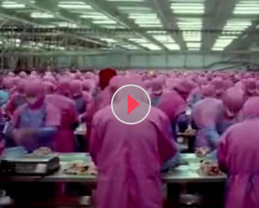 This Short Video Will Leave You Speechless